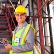 Stock Photo: Senior petrochemical worker