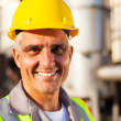 Senior oil and chemical worker — Stock Photo #27585281