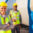 Stock Photo: Senior petroleum factory worker and colleague