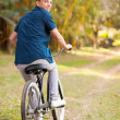 Joyful teen boy riding a bicycle — Stock Photo