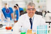 Senior scientist working in the lab — Stock Photo