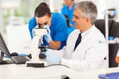 Senior medical researcher helping junior lab technician — Stock Photo