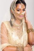 Indian woman wearing saree — Stock Photo