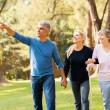 Middle aged couple taking elderly mother for a walk — Stock Photo