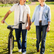 Senior couple walking a bike in park holding hands — Stock Photo