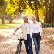 Mid age couple walking outdoors — Stock Photo #29905931