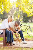 Middle aged couple playing with pet dog outdoors — Stock Photo
