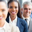 Stock Photo: Group of multiracial business people
