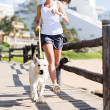 Womjogging with her dog — Stock Photo #38771235