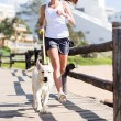 Woman jogging with her dog — Stock Photo #38771235