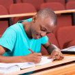 Student writing classwork — Stock Photo #42369675