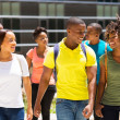 College students walking together — Stock Photo #42422347