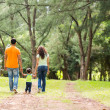 Family holding hands walking in forest — Stock Photo #44309127