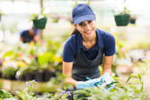 Young nursery worker gardening — Stock Photo