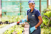 African female nursery worker watering plant — Stock Photo