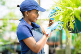 African female florist checking flowers condition — Stock Photo