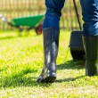 Man mowing lawn — Stock Photo #46007285