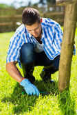 Man trimming grass at garden — Stock Photo