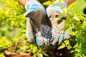 Garden fertilizer — Stock Photo