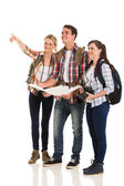 Tourists sightseeing and pointing direction — Stock Photo