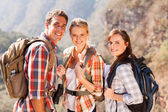 Group of hiking friends on mountain — Stock Photo