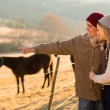 Young couple pointing at horse in the ranch — Stock Photo #50619507