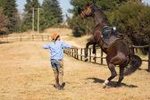 Cowboy taming a loosing racing horse — Stock Photo