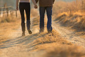 Young couple holding hands walking on autumn path — Foto de Stock