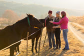 Group of friends petting horses — Stock Photo