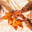 Couple holding autumn leaves — Stock Photo #50629869
