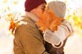 Young couple kissing behind autumn leaves — Stock Photo