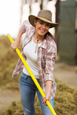 Young woman working in stable — Stock Photo