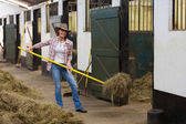 Female horse breeder working inside stable — Stock Photo