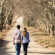 Young couple walking on country road — Stockfoto