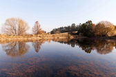 Autumn pond — Stock Photo