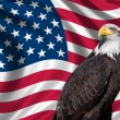 USA Flag with bald eagle - Stock Photo