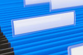 Blue File Folders — Stock Photo