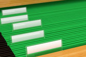 Green File Folders — Stock Photo