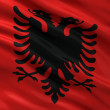 Flag of Albania — Photo