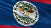 Flag of Belize — Stock Photo
