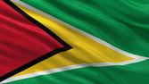 Flag of Guyana — Stock Photo