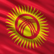 Flag of Kyrgyzstan — Stockfoto