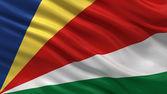 Flag of Seychelles — Stock Photo
