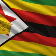 Flag of Zimbabwe — Stock Photo #36823261