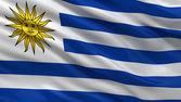 Flag of Uruguay — Stock Photo