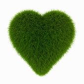 Grass heart — Stock fotografie