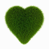 Grass heart — Stock Photo