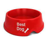 Best dog bowl — Stock Photo