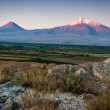 Ararat mountain. — Stock Photo #14159391