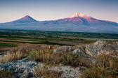 Ararat mountain. — Stock Photo